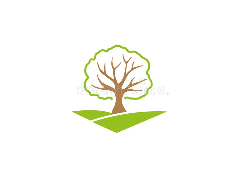 Obfitolistny drzewo na zielonym plateau kapuje dla logo projekta ilustracji
