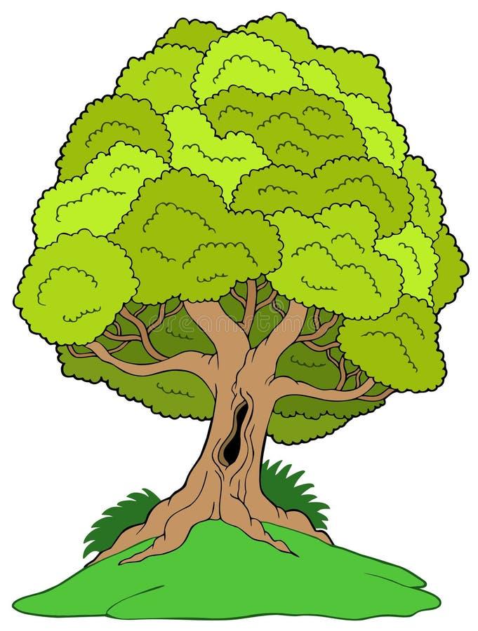 obfitolistny wzgórza drzewo royalty ilustracja