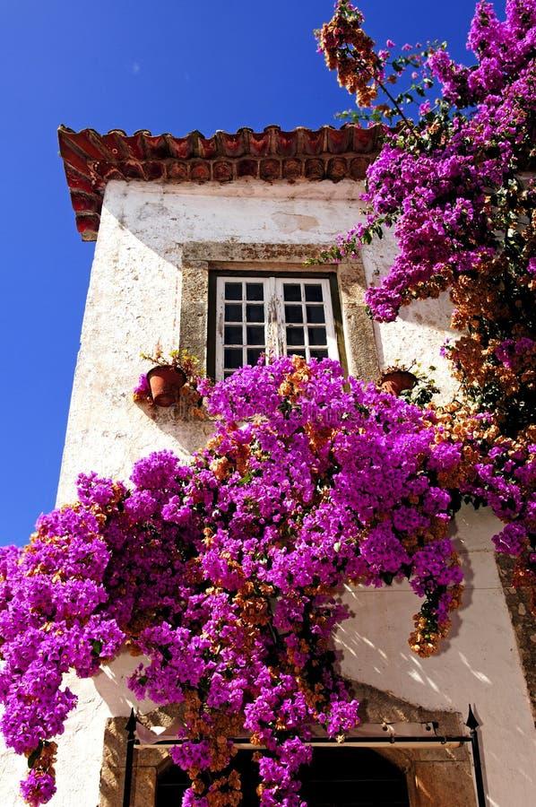 obidos Португалия города средневековые стоковое фото