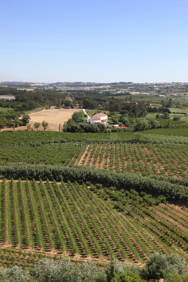 Download Obidos countryside stock photo. Image of rural, green - 28083974