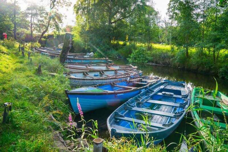 Obiektywu raca od ranku słońca przez drzew przez łodzie i wiązał strony kanał zdjęcie stock