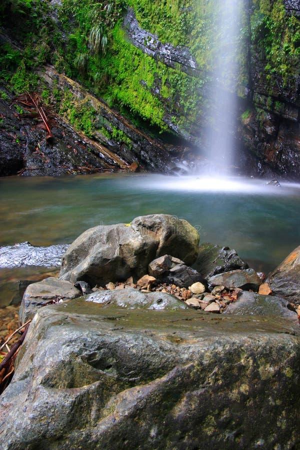 objętych kaskadą tropikalnego obraz stock