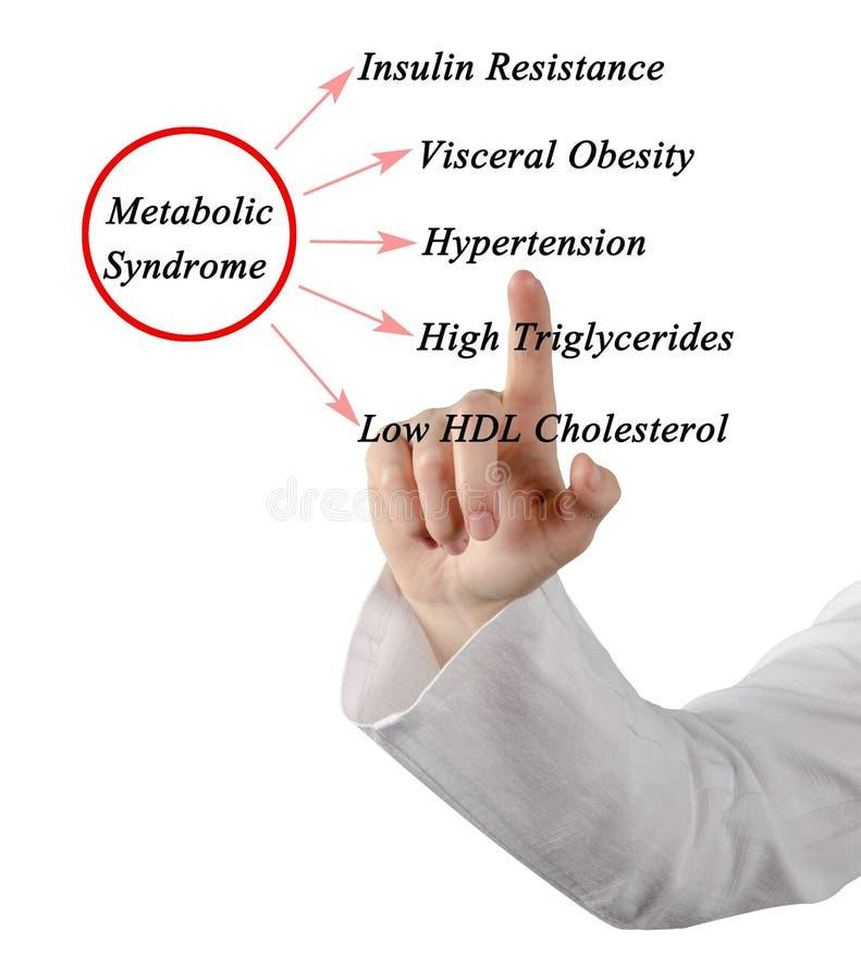 Objawy Metaboliczny syndrom zdjęcia royalty free