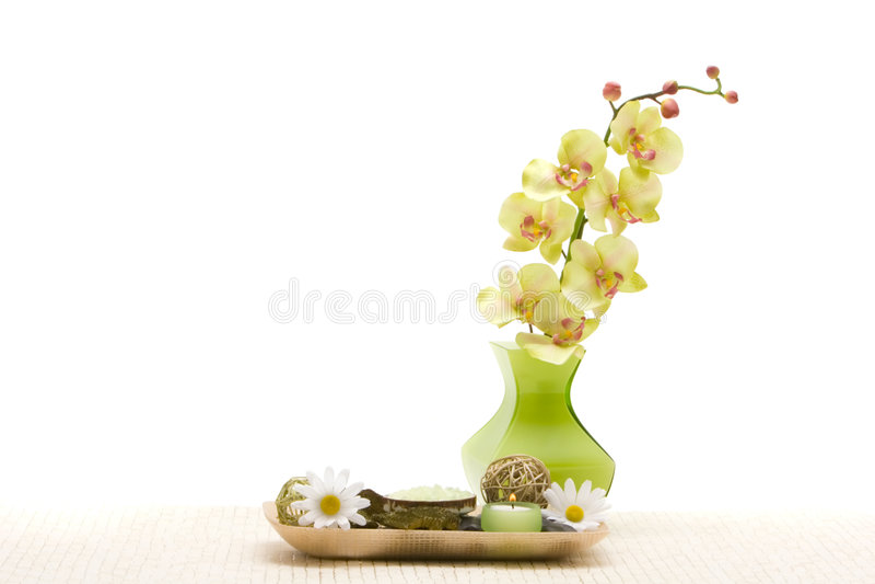 objects orchidbrunnsorten arkivfoto