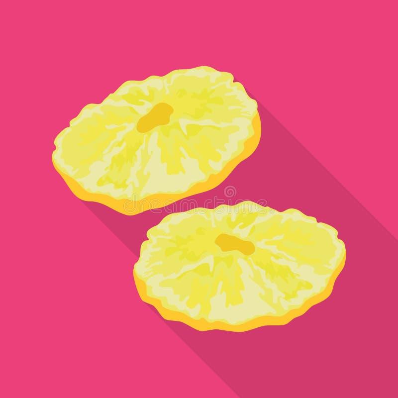 Objet d'isolement d'ananas et de signe sec Collection d'ananas et ic?ne tropicale de vecteur pour des actions illustration de vecteur
