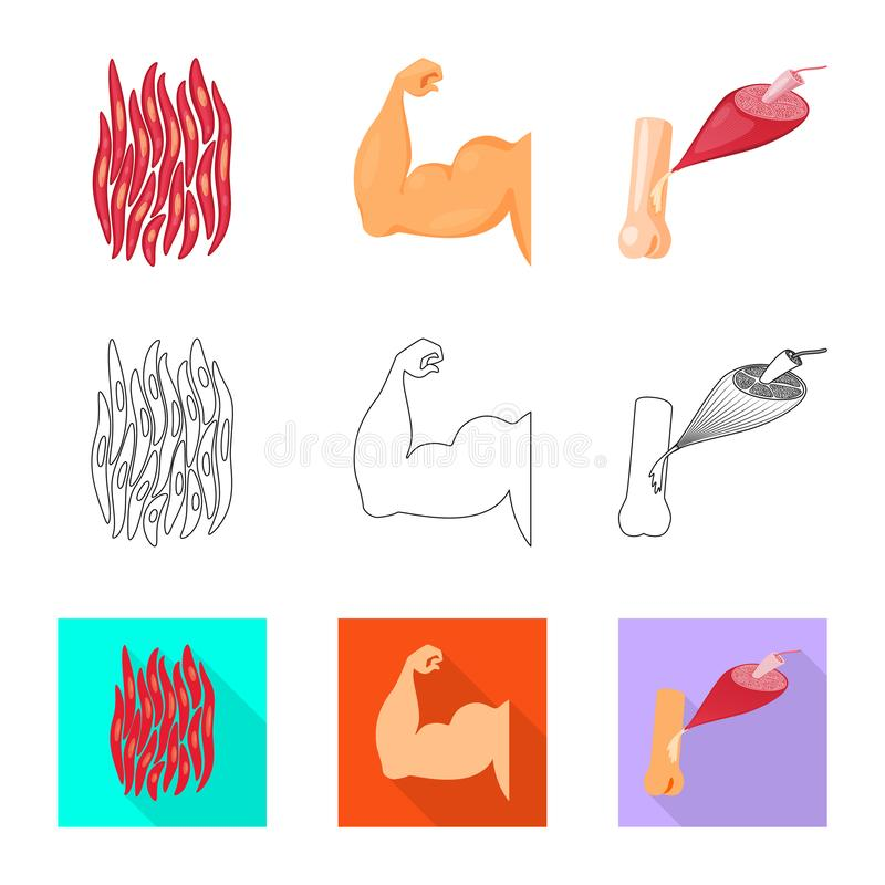 Objet d'isolement de fibre et de signe musculaire Placez de l'illustration de vecteur d'actions de fibre et de corps illustration stock