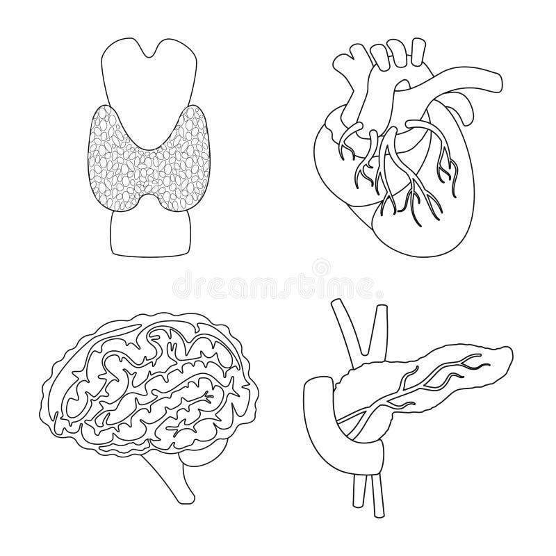 Objet d'isolement de logo d'anatomie et d'organe Placez de l'anatomie et de l'ic?ne m?dicale de vecteur pour des actions illustration libre de droits