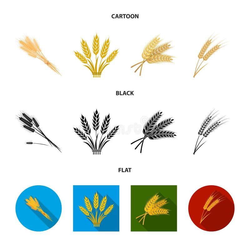 Objet d'isolement de logo de bl? et de tige Collection de l'illustration courante de vecteur de bl? et de grain illustration de vecteur