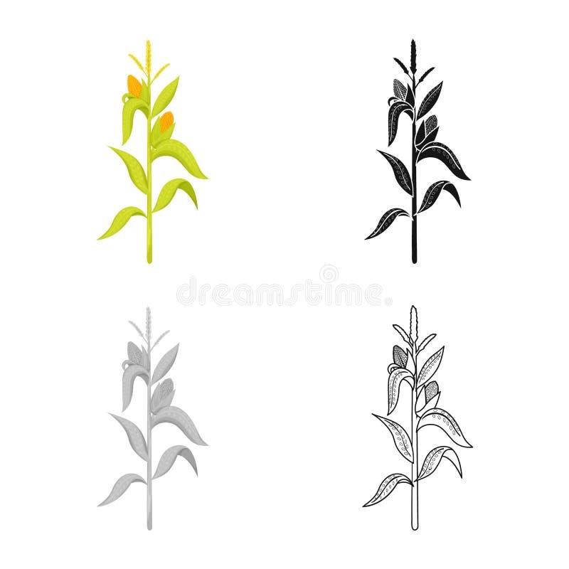 Objet d'isolement de logo de maïs et de tige Placez du symbole boursier de maïs et de champ pour le Web illustration de vecteur