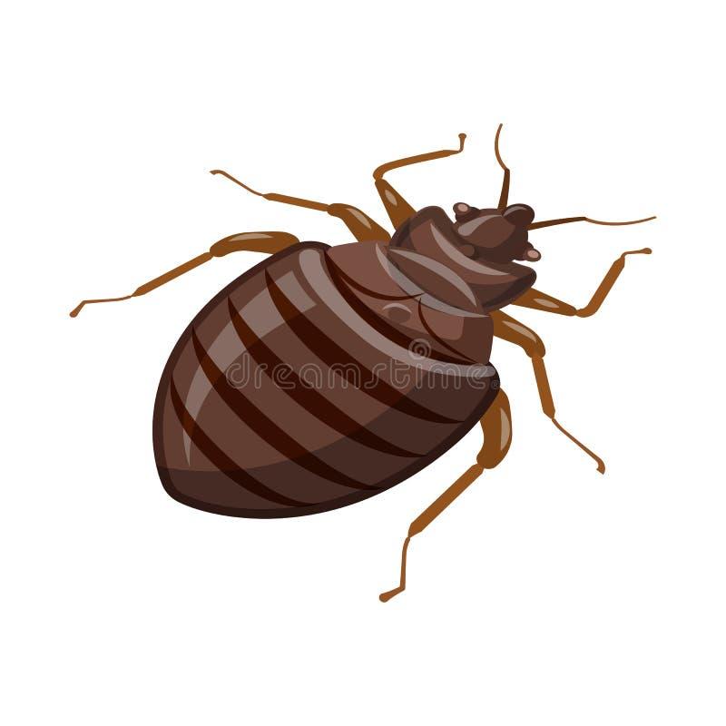 Objet d'isolement de scarabée et de logo noir Collection d'illustration de vecteur d'actions de scarabée et d'arthropode illustration libre de droits