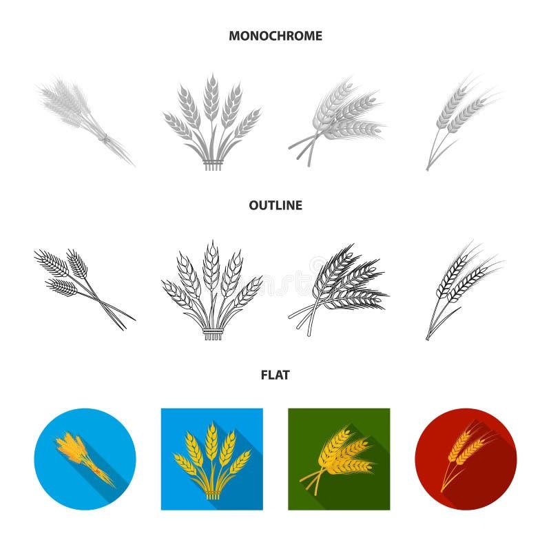 Objet d'isolement de signe de blé et de tige Collection de symbole boursier de bl? et de grain pour le Web illustration libre de droits