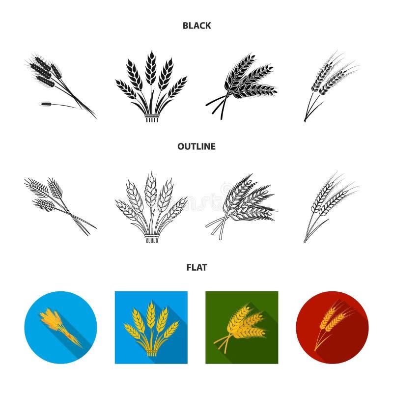 Objet d'isolement de signe de blé et de tige Placez de l'illustration courante de vecteur de bl? et de grain illustration de vecteur