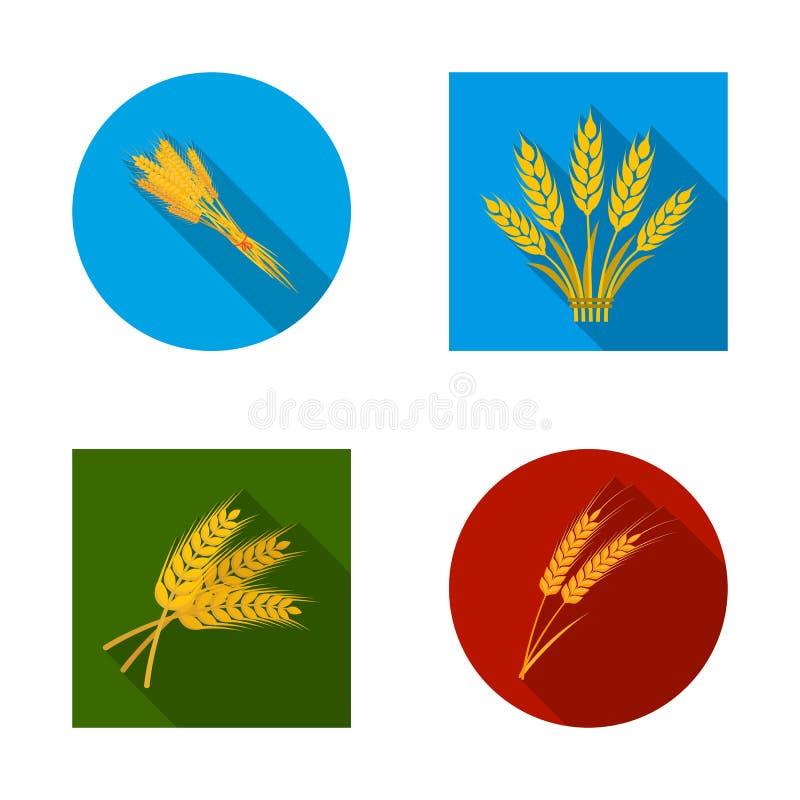 Objet d'isolement d'icône de blé et de tige Collection de l'illustration courante de vecteur de blé et de grain illustration libre de droits