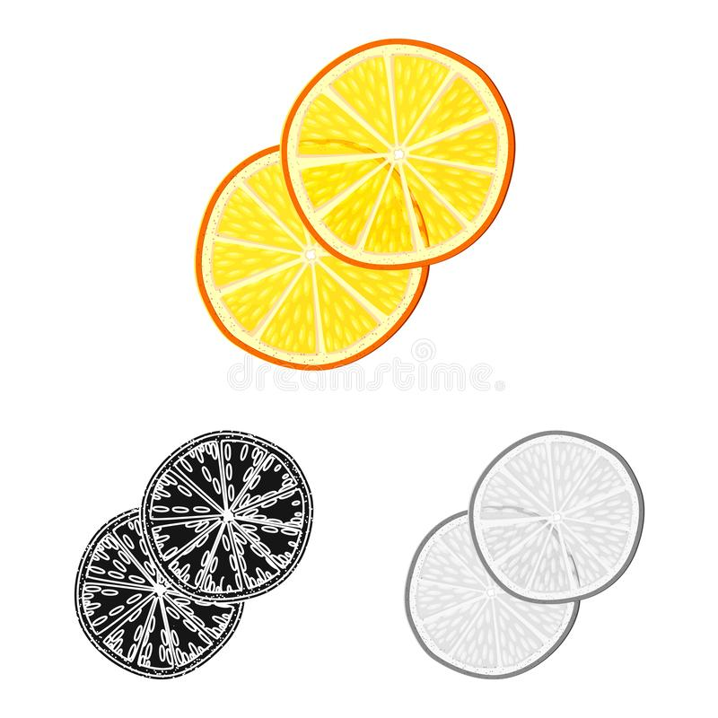 Objet d'isolement d'icône orange et sèche Placez de l'illustration courante orange et juteuse de vecteur illustration libre de droits