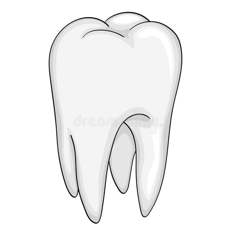 Objet d'isolement par dent humaine sur le fond blanc illustration stock