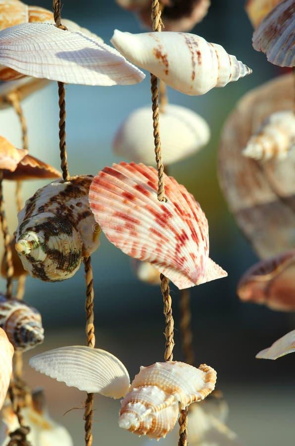 Objete com muitos shell para a venda em uma loja de lembrança imagem de stock