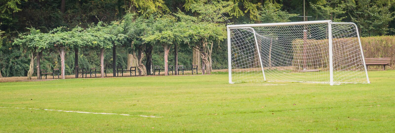 Objetivo do futebol no campo fotos de stock royalty free