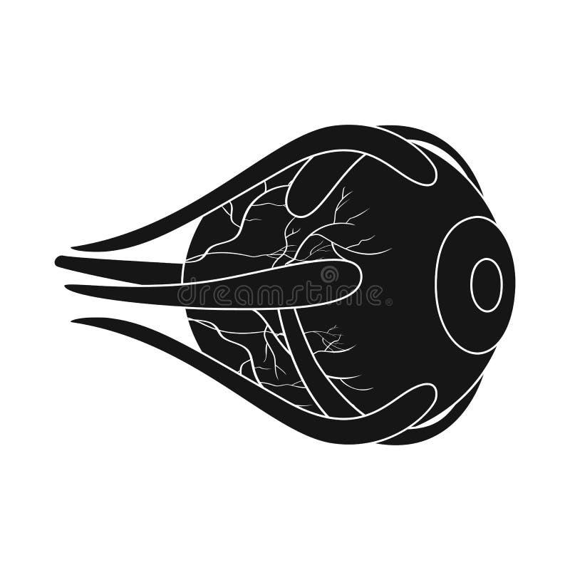 Objeto aislado de la investigación y del logotipo del laboratorio Colección de símbolo común de la investigación y del órgano par ilustración del vector