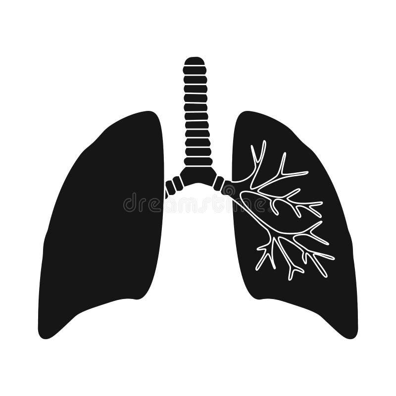 Objeto aislado de la investigación y del logotipo del laboratorio Colección de símbolo común de la investigación y del órgano par stock de ilustración