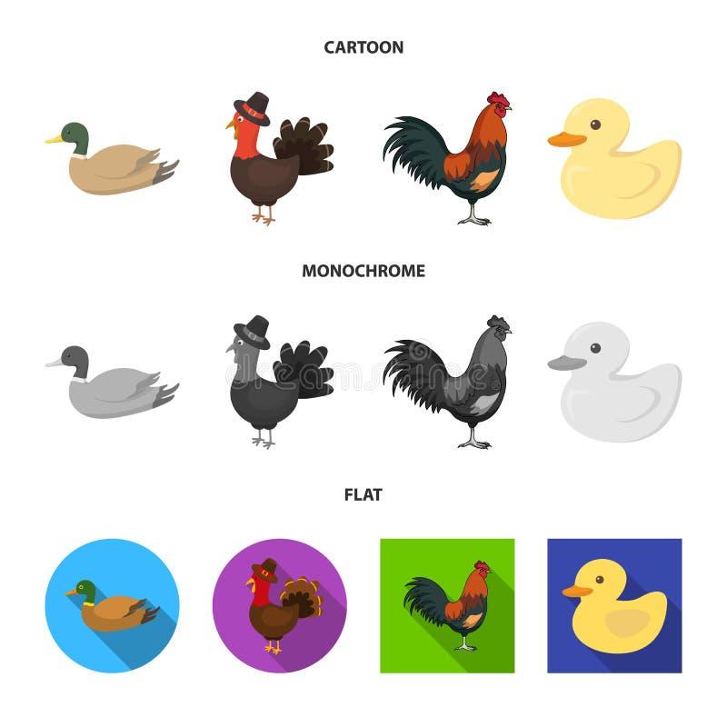 Objeto aislado de la muestra divertida y de las aves de corral Colecci?n de divertido y de ejemplo com?n del vector de cultivo libre illustration