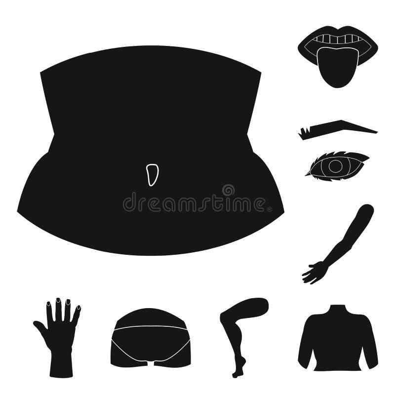 Objeto aislado del icono del cuerpo y de la parte Colección de símbolo común del cuerpo y de la anatomía para la web stock de ilustración