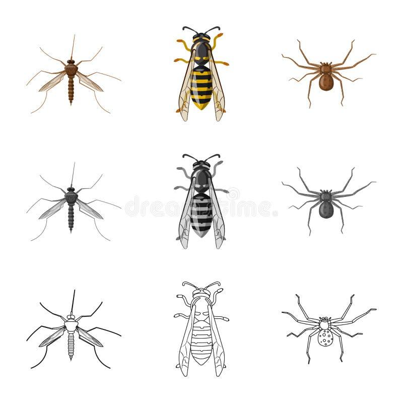 Objeto aislado del s?mbolo del insecto y de la mosca Colecci?n de icono del vector del insecto y del elemento para la acci?n ilustración del vector