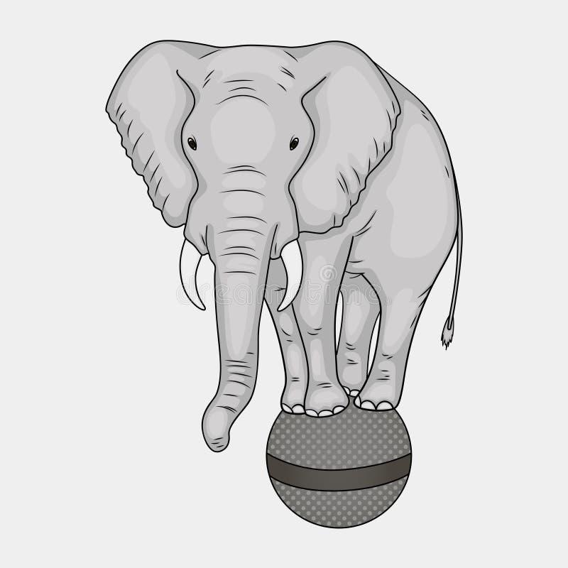 Objeto aislado en el fondo blanco Un elefante del circo se coloca en una bola La imitación del estilo cómico Color del vector de stock de ilustración