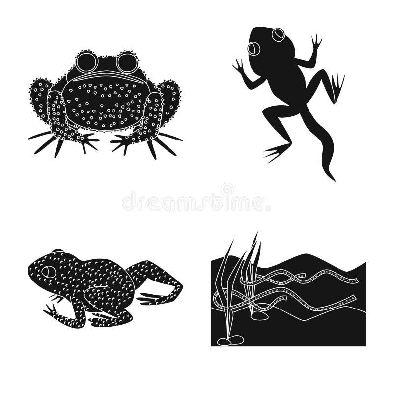 Objeto isolado da fauna e do logotipo do réptil Coleção da fauna e ícone anuran do vetor para o estoque ilustração stock