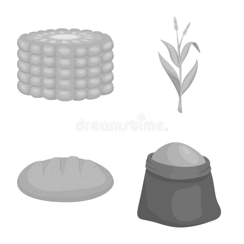 Objeto isolado do s?mbolo da agricultura e da nutri??o Cole??o da agricultura e da ilustra??o conservada em estoque vegetal do ve ilustração do vetor