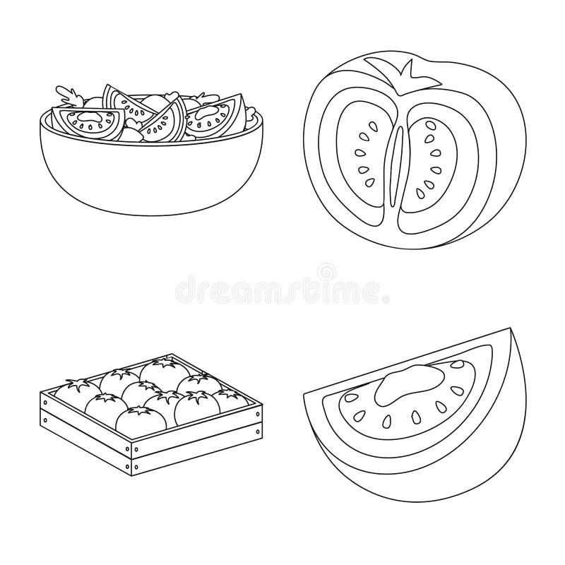 Objeto isolado do s?mbolo do tomat e da dieta Cole??o do s?mbolo de a??es do tomat e da agricultura para a Web ilustração do vetor