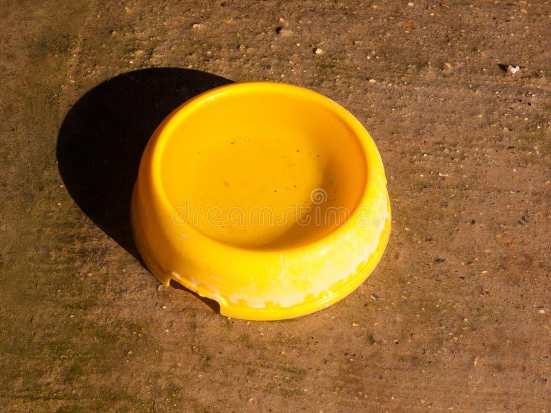 objeto retro do vintage do dia de verão do cão amarelo da bacia da água \ 'do alimento de s sedento fotos de stock royalty free