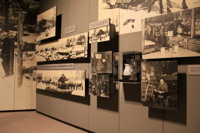 Objetos expuestos extensos dentro del museo del estado, esta cronología un que muestra de abrir una sesión el Adirondacks, Albany fotografía de archivo libre de regalías