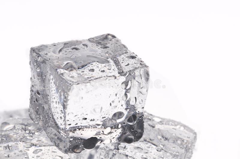 Objetos molhados dos cubos de gelo foto de stock