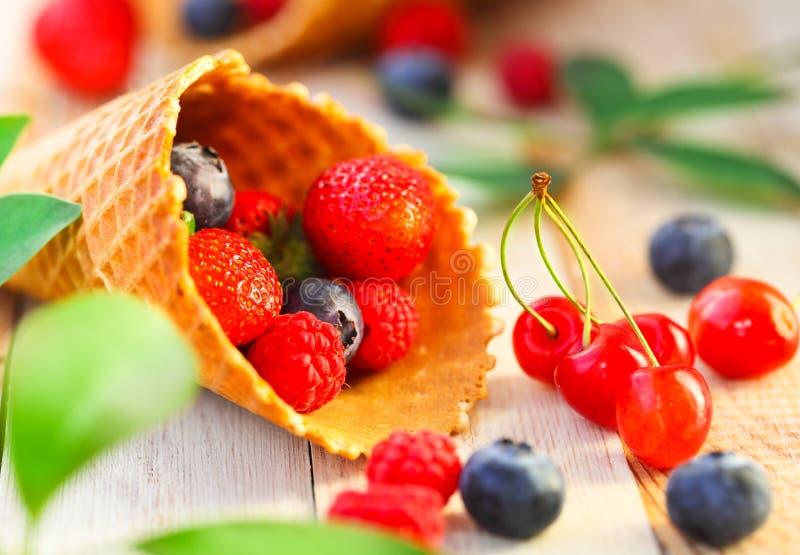 Oblatenschalen mit Erdbeere, Kirsche, Himbeere und Blaubeere lizenzfreie stockbilder