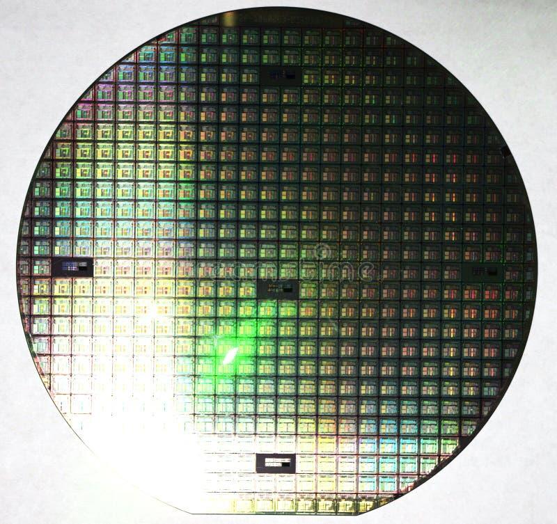 Oblea de silicio, chips de ordenador múltiples fotografía de archivo