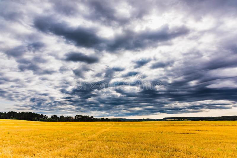 Beveled field landscape royalty free stock photo