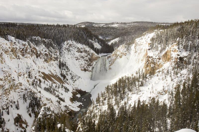 Obniża spadki i Yellowstone rzekę przy Uroczystym jarem Yellowstone zdjęcia royalty free
