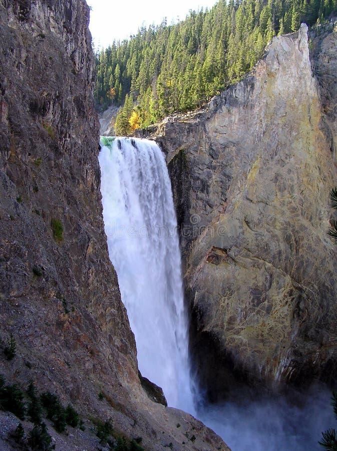 Obniża spadki w Uroczystym jarze Yellowstone zdjęcie royalty free