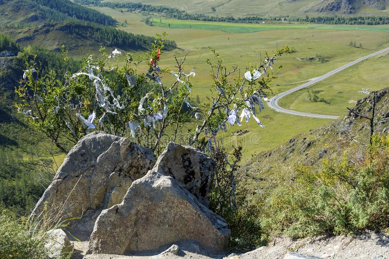 Oboo Chike-Taman passerande i de Altai bergen royaltyfria foton