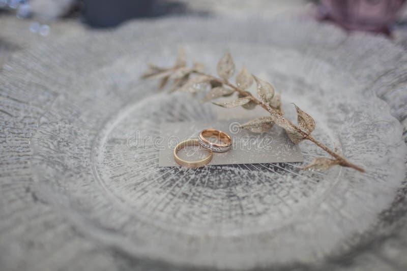 Obrączki ślubne i gałąź na srebnym talerzu kropią z śniegiem zdjęcia royalty free