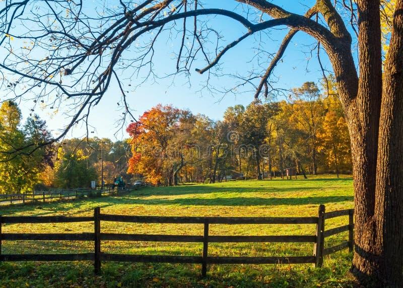 Obramiająca jesieni scena obraz stock