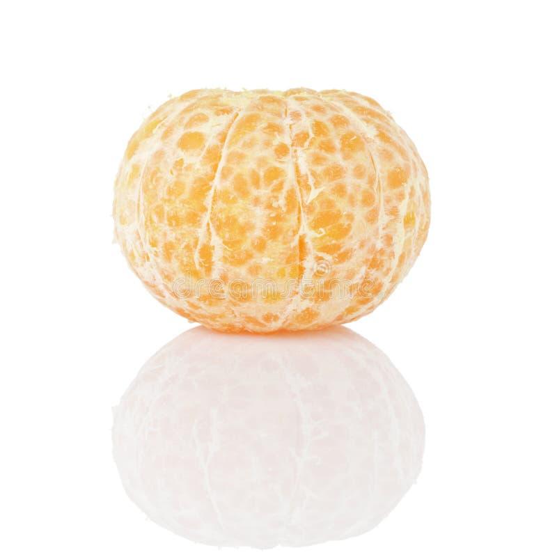 Obrany pojedynczy tangerine fotografia stock