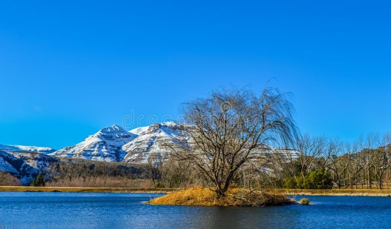 Obrazek doskonalić śnieg nakrywać Drakensberg góry i zielone równiny w Underberg blisko Sani przechodzą Południowa Afryka zdjęcia stock