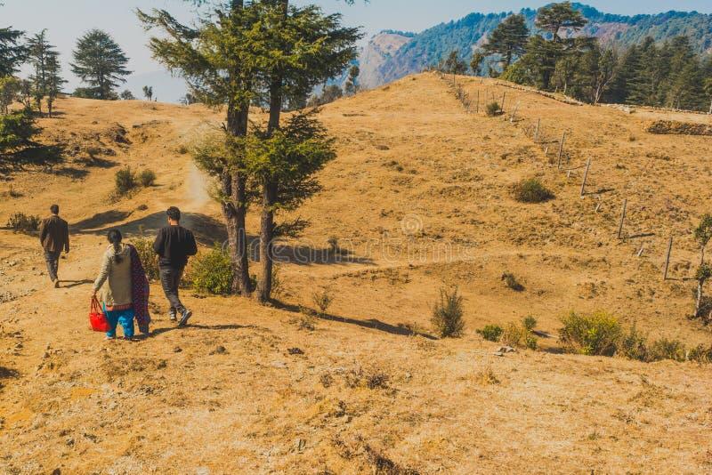 Obrazek indyjska rodzina bierze przespacerowanie przy szczytem wśród drzew obraz royalty free