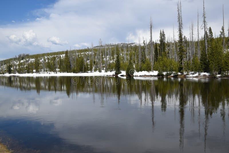 Obrazek odbicia W Yellowstone Rzeczny Wyoming Usa fotografia stock