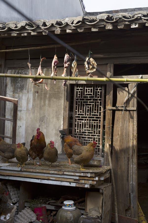 Obrazek wysuszony mięso i kurczaki obrazy stock