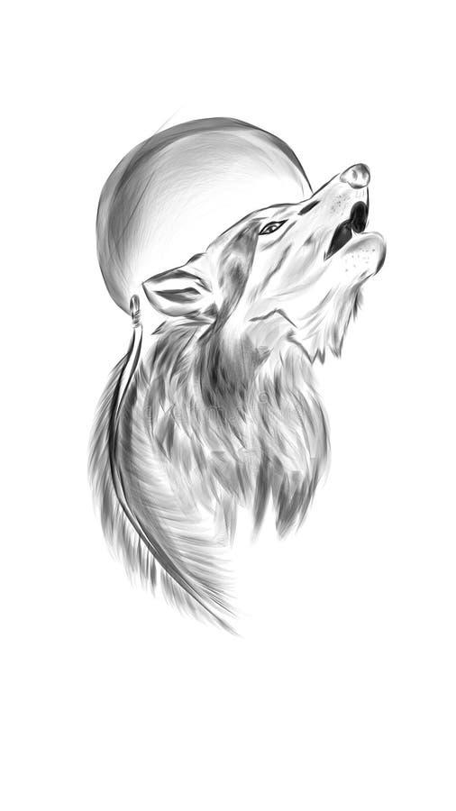 obrazkowy wilk royalty ilustracja