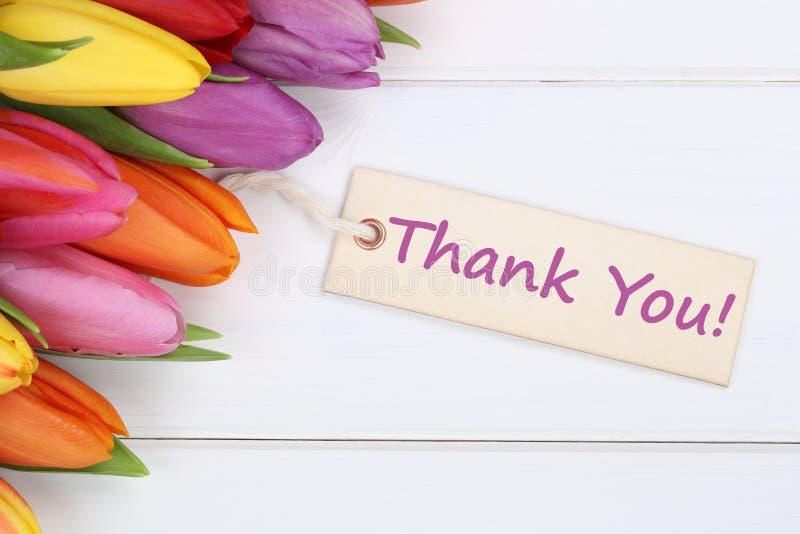 Obrigado com flores das tulipas fotos de stock royalty free