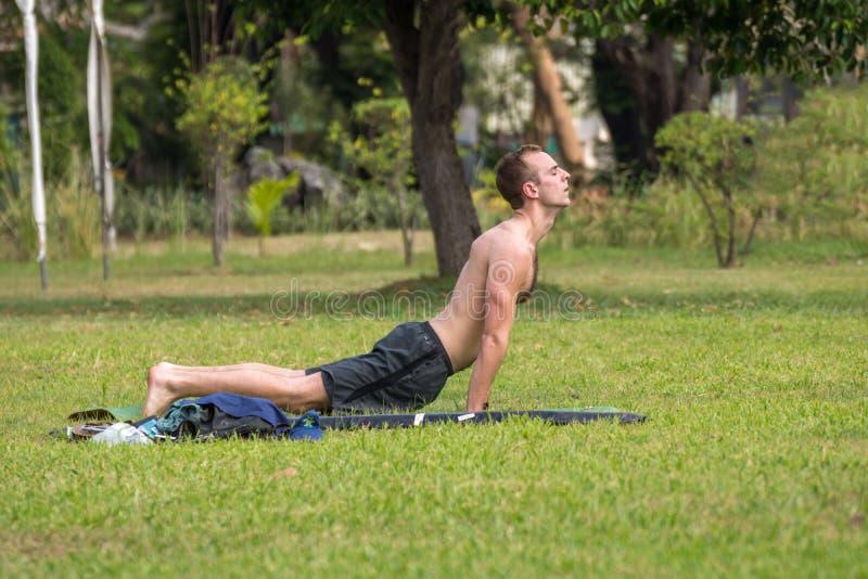 Obsługuje ćwiczyć joga w plenerowym parku obrazy royalty free