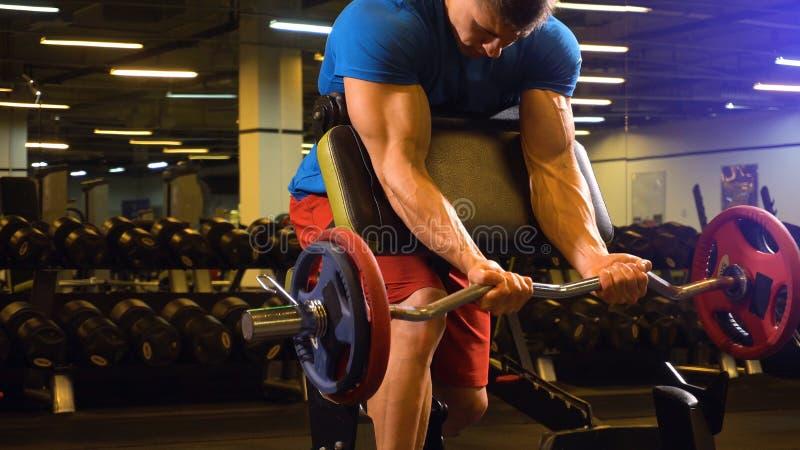 Obsługuje atleta trenera seans dlaczego robić excersis na bicepsach fotografia stock
